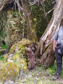 Un biólogo por nuestra ruta de los molinos